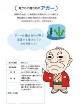 モニター★ニューシルバー&クールアガーの画像(3枚目)