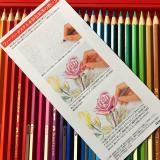 手軽に美しい水彩を始めたくなります★ファーバーカステル水彩色鉛筆★の画像(3枚目)