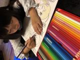 ☆お試し☆ファーバーカステル水彩色鉛筆の画像(2枚目)