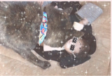 リビングでの赤ちゃんの居場所.·˖*✩⡱の画像(3枚目)