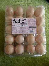 母ちゃん大笑いのコストコショッピング!!の画像(8枚目)