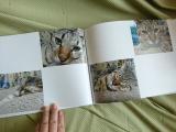 ココアルで幸&福&ベックのフォトブック作ってみました♪の画像(5枚目)