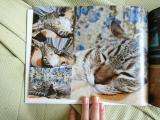 ココアルで幸&福&ベックのフォトブック作ってみました♪の画像(9枚目)