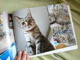 ココアルで幸&福&ベックのフォトブック作ってみました♪の画像(11枚目)