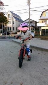 ◆アイデス D-Bike MASTER(ディーバイクマスター) 補助輪なしにトライ!の画像(6枚目)