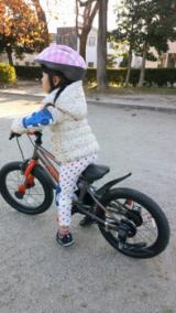◆アイデス D-Bike MASTER(ディーバイクマスター) 補助輪なしにトライ!の画像(4枚目)