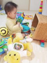8m5d*新しいおもちゃとお掃除ロボの画像(3枚目)