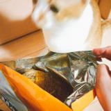 【キャットフード】メディファス 避妊去勢ケア子ねこから10歳までチキン&フィッシュ味1.4kgの画像(2枚目)