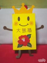 「☆ 大島椿株式会社さん 創業90周年 & つばき~ゆ 誕生 8周年おめでとうございます! 大島椿スペシャルBOX が 凄いぞ! ① 」の画像(7枚目)