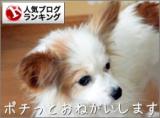 寒いときの豚汁は感動するぐらい美味しい2018 / 01 / 25 ( Thu )の画像(4枚目)