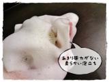 「洗う前より肌のキメが整う」の画像(3枚目)