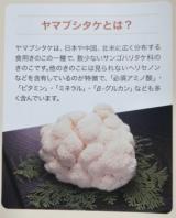 ホクト きのこの炊き込みご飯の画像(21枚目)