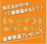 あさくさ 福猫太郎 開運 豆お守りの画像(4枚目)