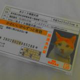 あさくさ福猫太郎の豆お守り の画像(1枚目)