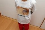 自然な仕上がりに大満足!オリジナルのTシャツなどを作れる「デコプリ」でハムちゃんのTシャツを作ってみたの画像(31枚目)