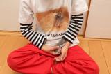 自然な仕上がりに大満足!オリジナルのTシャツなどを作れる「デコプリ」でハムちゃんのTシャツを作ってみたの画像(35枚目)