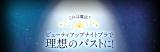 「☆リニューアルナイトブラ☆」の画像(12枚目)