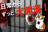 縁起のいい「あさくさ福猫太郎」開運グッズの画像(1枚目)