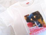 ☆愛犬の写真で!オリジナルTシャツを☆の画像(4枚目)