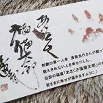 あさくさ福太郎様より、開運豆お守りをお届け頂きました♥小さくて可愛い猫さんです🐱✨福猫さん効果で私だけでなく周りの皆様にも素敵なご縁がたくさん生まれることを願ってお財布に入れてます✨…のInstagram画像