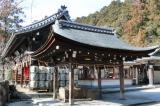 近江八幡/日牟礼八幡宮etc/2月中旬 の画像(18枚目)