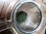 お茶の荒畑園の深むし茶でお茶タイムの画像(3枚目)