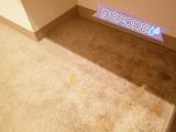「【モニター】リンレイ 玄関ベランダ用専用洗剤」の画像(4枚目)