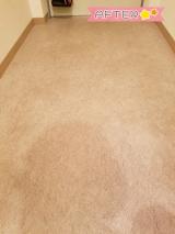 「【モニター】リンレイ 玄関ベランダ用専用洗剤」の画像(5枚目)