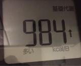 スタイルナビ インナーマッスル ダイエット記録 その3の画像(8枚目)
