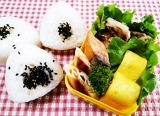 久しぶりのお弁当作り 鮭弁当&おにぎり弁当の画像(3枚目)