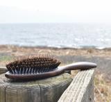 「海辺」の画像(1枚目)
