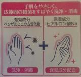 「消毒ハンドミルク ~日本ゼトック株式会社」の画像(4枚目)
