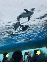 サンシャイン水族館♡の画像(6枚目)
