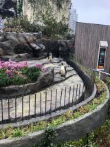 サンシャイン水族館♡の画像(5枚目)