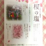 食べて春を感じる♥【モニター】桜の塩の画像(5枚目)