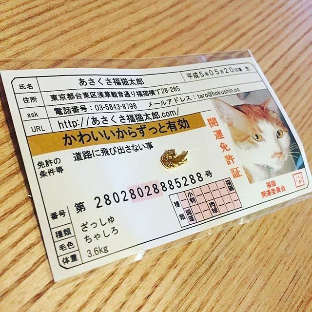 口コミ投稿:#あさくさ福猫太郎 #浅草名物 #monipla #あさくさ福猫太郎ショップファンサイト参加中