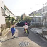D-Bike Xstreet 20 と、春のお散歩♪の画像(2枚目)
