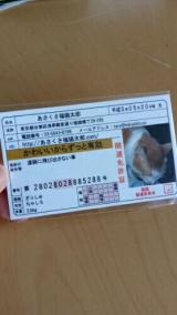 あさくさ福猫太郎の開運肉球の画像(1枚目)