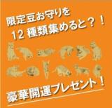 開運福猫豆お守りガチャ♪の画像(1枚目)