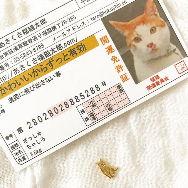 口コミ投稿:..福を呼ぶにゃんこらしい🐈めちゃくちゃちっちゃくてびっくり💛..#あさくさ福猫太郎 #…