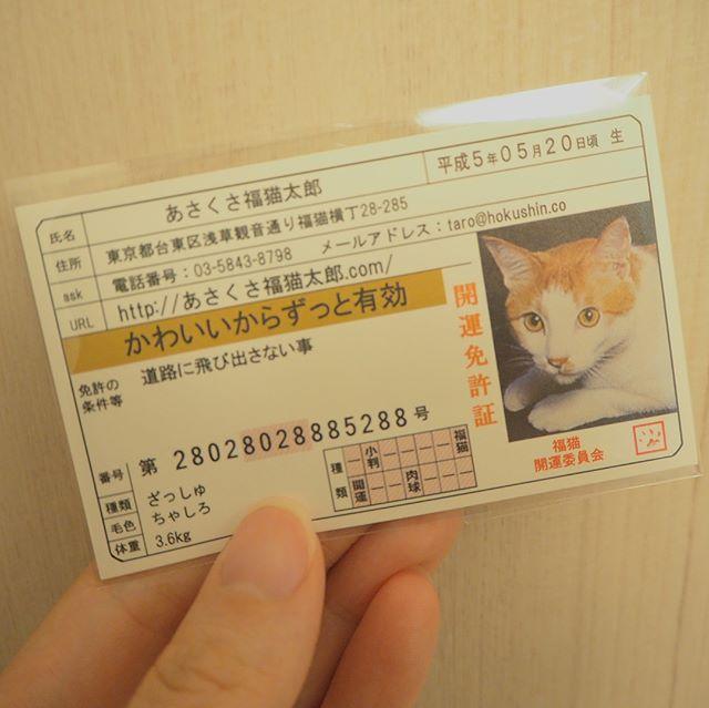 口コミ投稿:・開運♡福猫太郎・可愛すぎる開運免許証。これ持ってたら、良いことありそう(●´ω`●)…