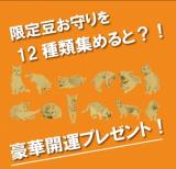 あさくさ福猫太郎 非売品開運豆お守りの画像(3枚目)