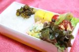 ハンバーグお弁当 | kozakanaのクッキングスタイル - 楽天ブログの画像(2枚目)