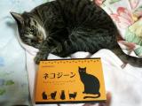 健康長寿猫をめざして、「ネコジーン」の画像(1枚目)