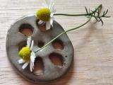 創業101年目「元祖こんぶ茶」の玉露園・濃い抹茶味がおいしい濃いグリーンティーの画像(7枚目)