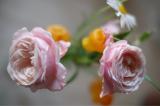 「嬉しいサービス★お花の定期便Medelu」の画像(9枚目)