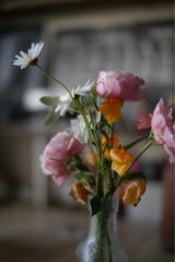 「嬉しいサービス★お花の定期便Medelu」の画像(11枚目)