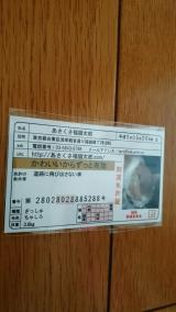 「あさくさ福猫太郎 豆お守り^^」の画像(3枚目)