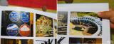 「☆ 株式会社ジャストシステムさん cocoal(ココアル)見開き幅56cmのワイドサイズのフォトブック で 子供の成長記録を一冊に!これで19冊目。」の画像(9枚目)