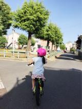 D-Bike Xstreet 20 で公園へ♪の画像(2枚目)
